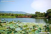 台東關山親水公園:080815-1 (16).jpg