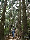 藤枝森林遊樂區:051242