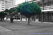 母校-文山高中:1102-07 (14).jpg