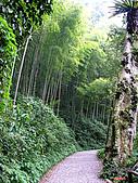 藤枝森林遊樂區:051250