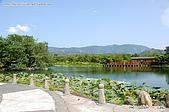 台東關山親水公園:080815-1 (17).jpg