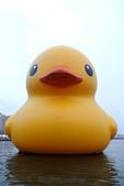 高雄黃色小鴨:131001 (22).jpg