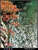 二部曲 武陵楓彩:022502