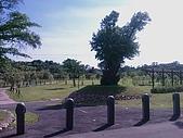 竹寮自然生態園區:IMAG0530.jpg