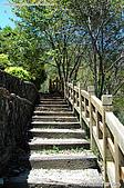 八仙山國家森林遊樂區:080910 (05).jpg