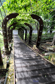 知本國家森林遊樂區:130530-6 (19).jpg
