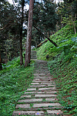 池南國家森林遊樂區:090220 (09).jpg