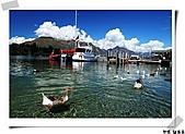 印象~紐西蘭:印象紐西蘭24.jpg