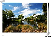 印象~紐西蘭:印象紐西蘭11.jpg