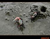 20090725_高美濕地&伸港一日遊:nEO_IMG_IMG_4742.jpg