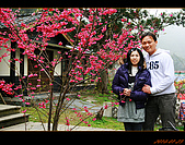 20100123~24_清境/合歡山-二日遊:nEO_IMG_IMG_6585.jpg