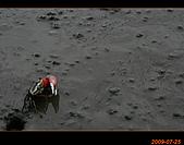 20090725_高美濕地&伸港一日遊:nEO_IMG_IMG_4711.jpg