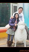 20100123~24_清境/合歡山-二日遊:nEO_IMG_IMG_6493.jpg
