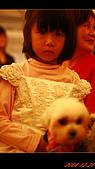 20081228_佳代&佳惠結婚台北場:nEO_IMG_IMG_2911.jpg