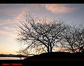 20101007_日本˙福岡行_Day 2:20101007-0515-2.jpg