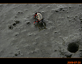 20090725_高美濕地&伸港一日遊:nEO_IMG_IMG_4718.jpg