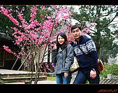 20100123~24_清境/合歡山-二日遊:nEO_IMG_IMG_6587.jpg