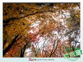Xuite活動投稿相簿:松盧前一隅