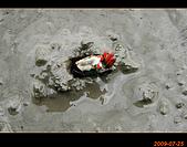 20090725_高美濕地&伸港一日遊:nEO_IMG_IMG_4733.jpg