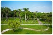 20110821_大安森林公園之什麼都有:Canon EOS 5D Mark II-20110821-0817-31.jpg