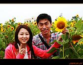 20090524_桃園_向陽農場:nEO_IMG_IMG_4011.jpg