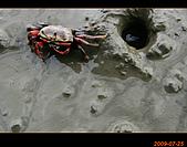 20090725_高美濕地&伸港一日遊:nEO_IMG_IMG_4755.jpg