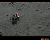 20090725_高美濕地&伸港一日遊:nEO_IMG_IMG_4720.jpg