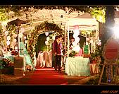 20081228_佳代&佳惠結婚台北場:nEO_IMG_IMG_2761.jpg