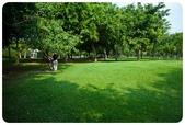 20110821_大安森林公園之什麼都有:Canon EOS 5D Mark II-20110821-0826-32.jpg