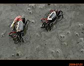 20090725_高美濕地&伸港一日遊:nEO_IMG_IMG_4748.jpg