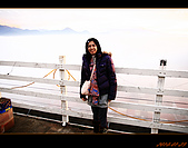 20100123~24_清境/合歡山-二日遊:nEO_IMG_IMG_6658.jpg