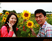 20090524_桃園_向陽農場:nEO_IMG_IMG_4014.jpg