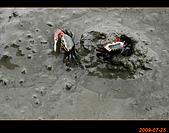 20090725_高美濕地&伸港一日遊:nEO_IMG_IMG_4735.jpg