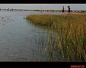 20090725_高美濕地&伸港一日遊:nEO_IMG_IMG_4850.jpg