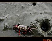 20090725_高美濕地&伸港一日遊:nEO_IMG_IMG_4756.jpg