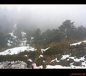 20100123~24_清境/合歡山-二日遊:nEO_IMG_P1010722.jpg