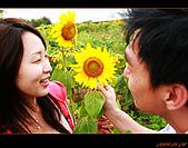 20090524_桃園_向陽農場:nEO_IMG_IMG_4015.jpg