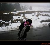 20100123~24_清境/合歡山-二日遊:nEO_IMG_P1010724.jpg