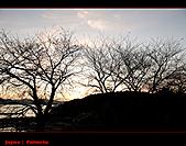 20101007_日本˙福岡行_Day 2:20101007-0519-7.jpg