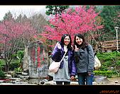 20100123~24_清境/合歡山-二日遊:nEO_IMG_IMG_6592.jpg