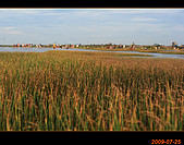 20090725_高美濕地&伸港一日遊:nEO_IMG_IMG_4851.jpg