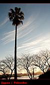 20101007_日本˙福岡行_Day 2:20101007-0533-8.jpg