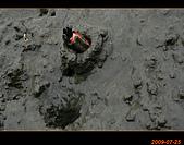 20090725_高美濕地&伸港一日遊:nEO_IMG_IMG_4724.jpg