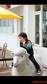 20100123~24_清境/合歡山-二日遊:nEO_IMG_IMG_6497.jpg