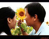 20090524_桃園_向陽農場:nEO_IMG_IMG_4017.jpg