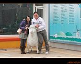 20100123~24_清境/合歡山-二日遊:nEO_IMG_IMG_6487.jpg