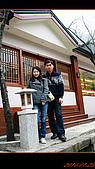 20100123~24_清境/合歡山-二日遊:nEO_IMG_IMG_6578.jpg