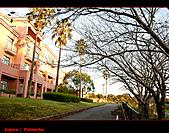 20101007_日本˙福岡行_Day 2:20101007-0536-9.jpg