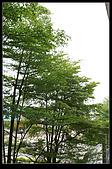 20080229_大陸工廠:nEO_IMG_IMG_9845.jpg