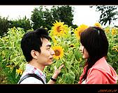 20090524_桃園_向陽農場:nEO_IMG_IMG_4018.jpg